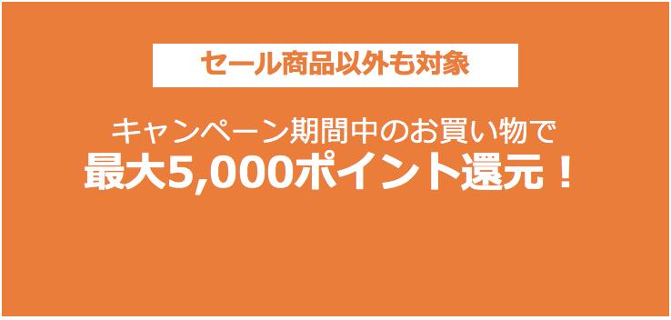 Amazonポイントアップキャンペーン_ロゴ